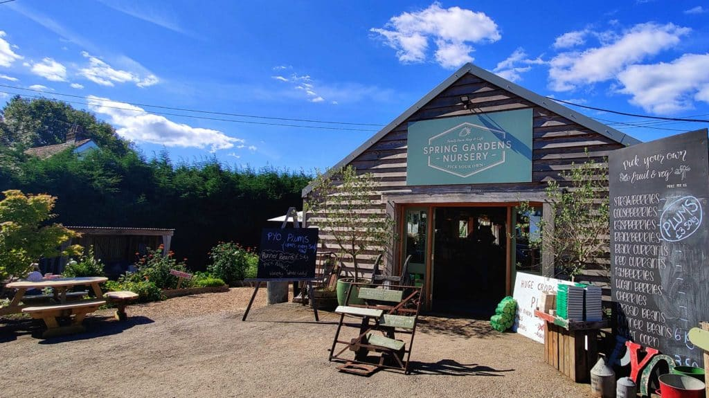 Spring Gardens Nursery our favourite 'pick your own' in West Sussex